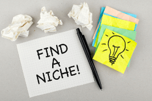 Importance Of Finding A Niche